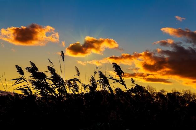 Kleurrijke herfstzonsondergang met zonnestralen die de wolken kleuren