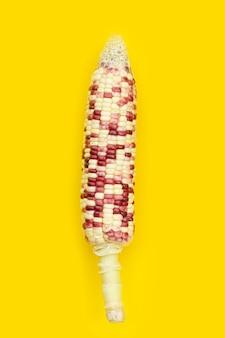 Kleurrijke maïs op gele achtergrond.
