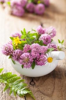 Kleurrijke medische bloemen en kruiden in mortel