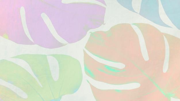 Kleurrijke monstera-bladeren op lichtgroene achtergrond Gratis Foto