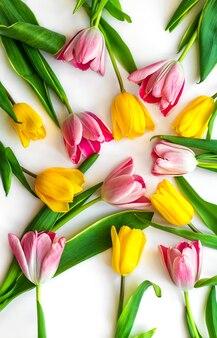 Kleurrijke natuurlijke tulpen zijn aangelegd op een witte achtergrond. lente flatlay lay-out