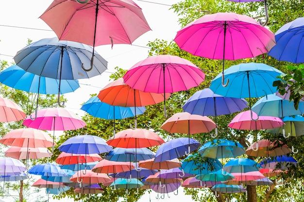 Kleurrijke paraplu's in de boom