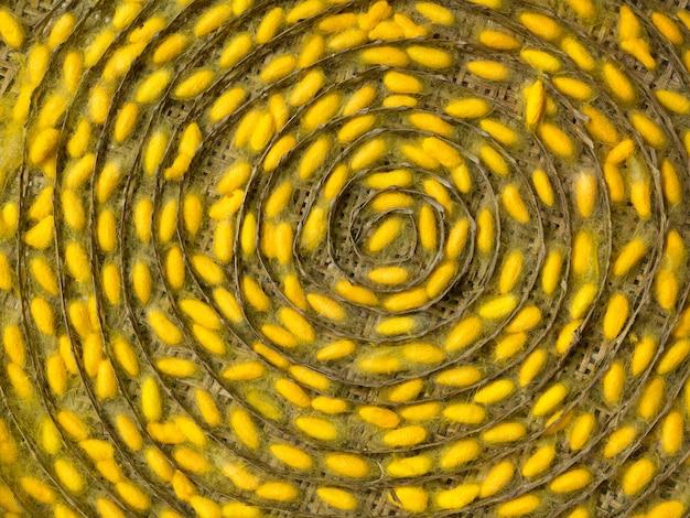 Kleurrijke patronen van zijdewormcocons.
