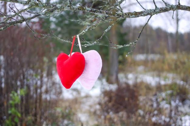 Kleurrijke pluche harten op boomtak in herfsttuin.