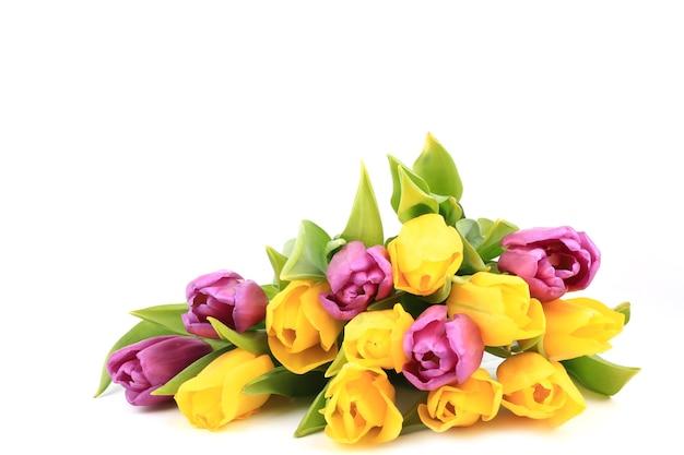 Kleurrijke tulpen geïsoleerd op een witte achtergrond