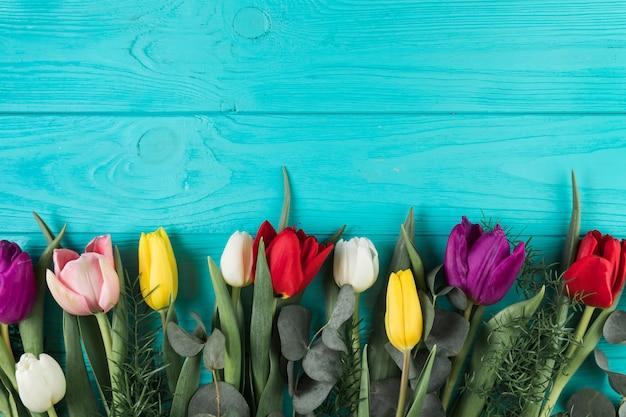 Kleurrijke tulpen met bladeren op turquoise houten achtergrond