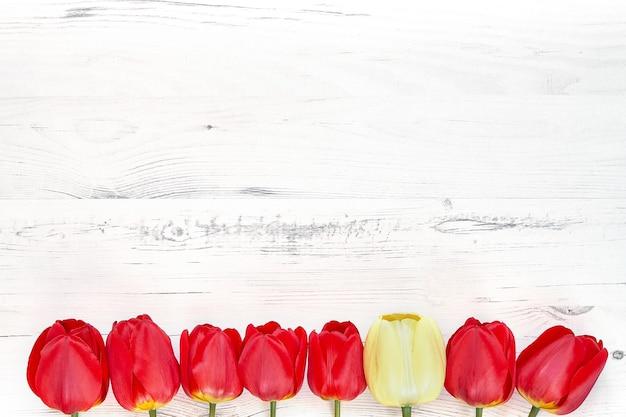 Kleurrijke tulpengrens op witte houten. kopieer ruimte, bovenaanzicht. moederdag, verjaardag, valentijnsdag concept.