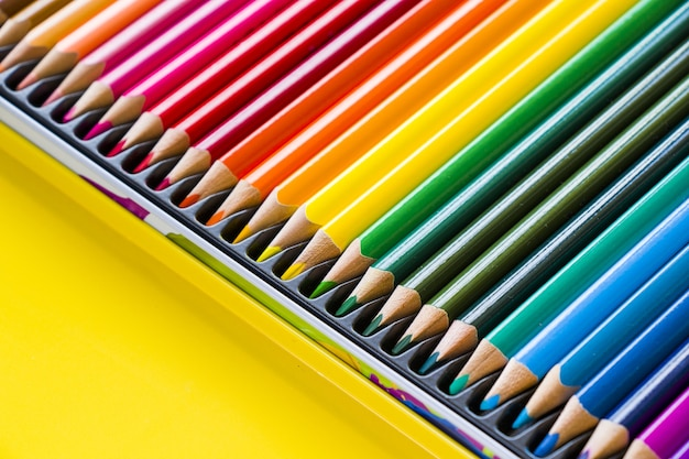 Kleurrijke veelkleurige potloden om te tekenen en schilderen