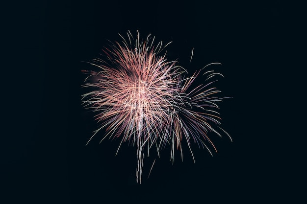 Kleurrijke vuurwerkexplosie in jaarlijks festival