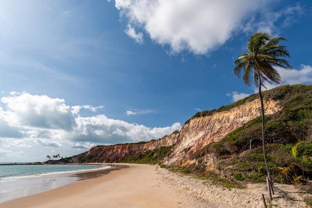 Klif bij coqueirinho beach conde in de buurt van joao pessoa paraiba brazilië op 26 september 2012