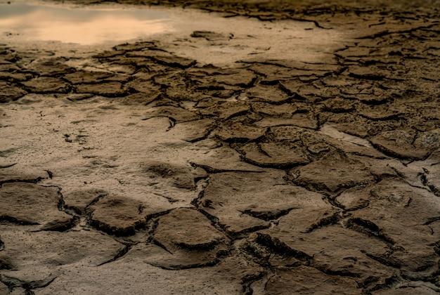 Klimaatverandering en droogteland. water crisis. droog klimaat. crack bodem. opwarming van de aarde. omgeving probleem. natuurramp.