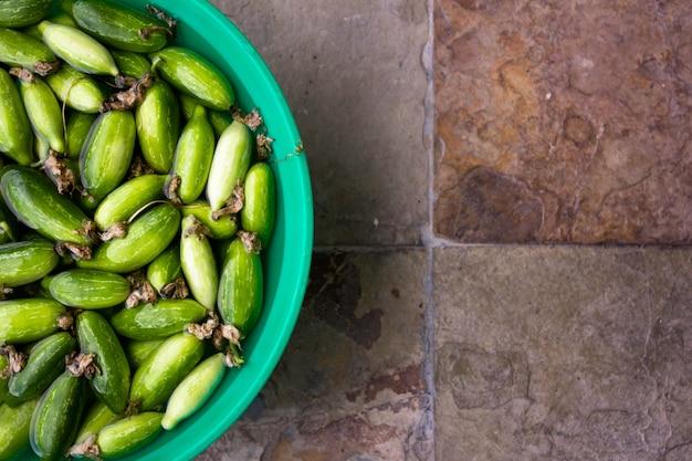Klimop kalebas zacht in water op vintage tegels