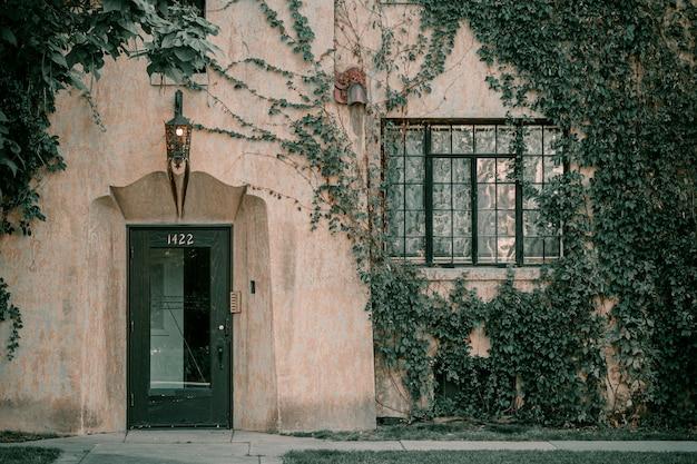 Klimop op de muur van het huis. herfstbladeren klimop op de vintage ramen.