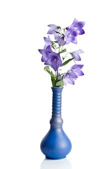 Klokbloem in vaas op wit wordt geïsoleerd dat