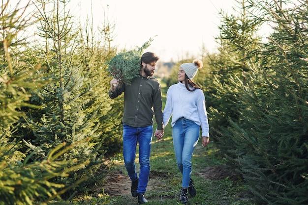 Knappe lachende bebaarde man schouder fir tree dragen en houden van zijn vrolijke vrouw lopen spar