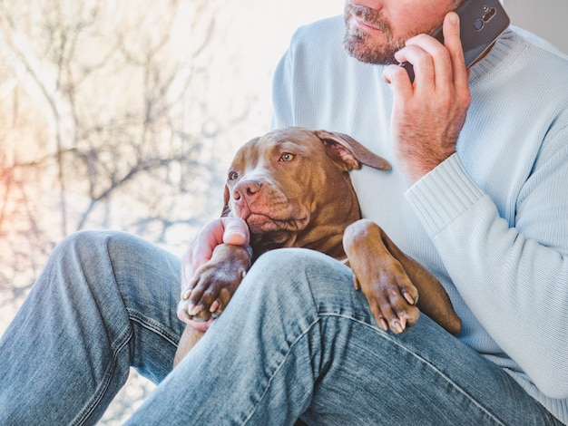 Knappe man en een charmante puppy. detailopname