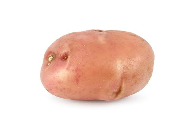 Knol aardappel rijpe close-up geïsoleerd op een witte ondergrond