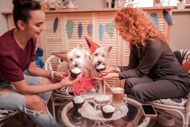 Koekjes voor honden. glimlachende gelukkige jonge vrouwen die cupcakes geven voor hun verjaardagshonden