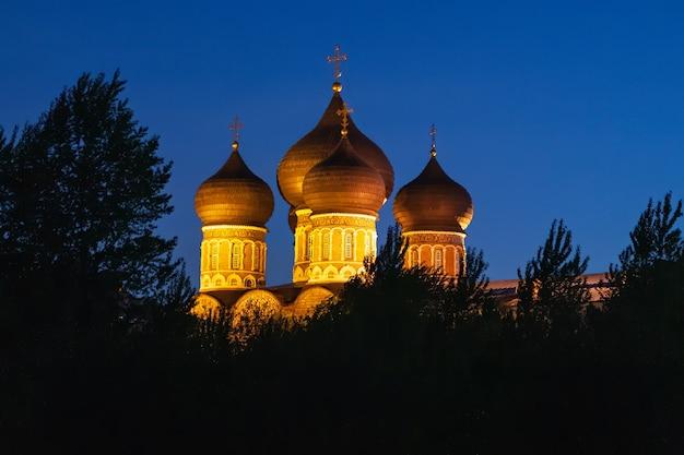 Koepels met gouden kruisen van de kathedraal van voorbede met het bouwen van licht 's nachts