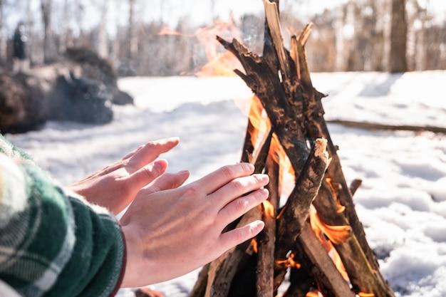 Koesteren in de buurt van een kampvuur in een besneeuwde berk bos. vrouwelijke persoon die warm dichtbij een brand op een zonnige de winterdag in het hout wordt