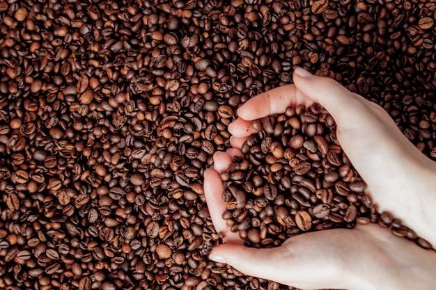 Koffiebonen in mensenpalmen in vorm van een hart op koffieachtergrond.
