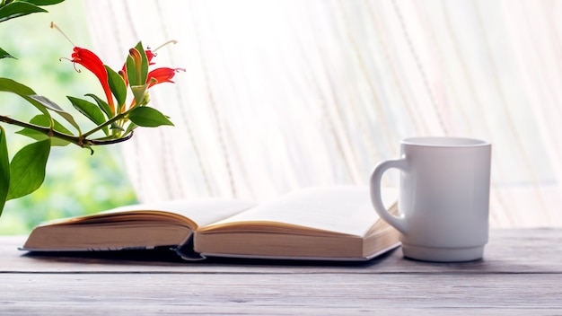 Koffiemok, boek en bloempotten bij het raam