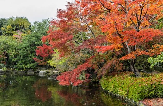 Kokoen, traditionele japanse tuin tijdens de herfstseizoen in himeji, japan