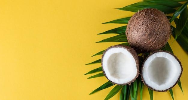 Kokosnoot met groene bladeren op een gele achtergrond.