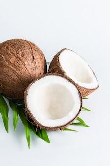 Kokosnoot met groene bladeren op een witte achtergrond.