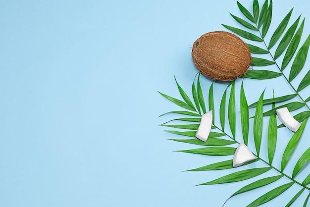 Kokosnoot met palmbladeren op blauwe achtergrond rechtenvrije stockafbeeldingen