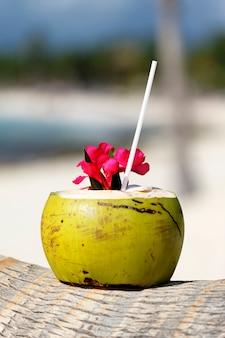 Kokosnoot met rietje op een palmboom aan zee