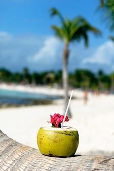 Kokosnoot met rietje op een palmboom op het strand