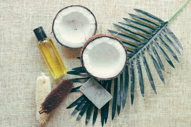 Kokosnoten en palmblad