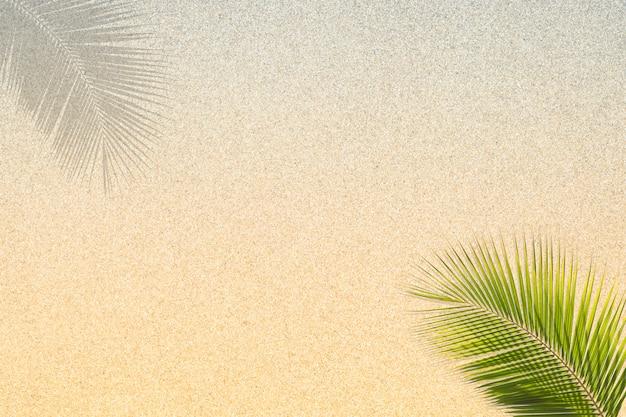 Kokosnotenbladeren op de achtergrond van de zandtextuur. zomer zand achtergrond. achtergrond van fijn zand. zand achtergrond