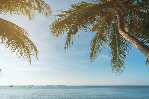 Kokosnotenplam boom met zon en blauwe hemel bij tropisch strand, het concept van de de zomervakantie