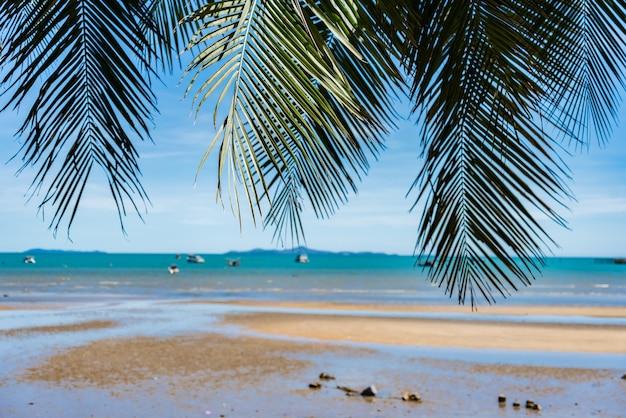 Kokospalm en landschap strand met blauwe lucht voor zomervakantie