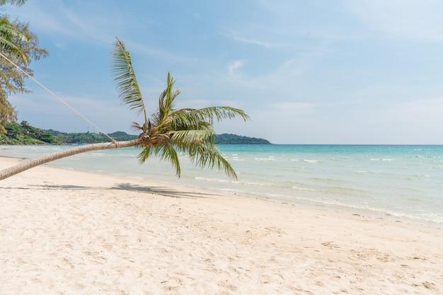 Kokospalm op het tropische strand, blauwe hemel, het eiland van thailand