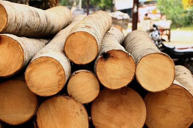 Kokospalmstammen