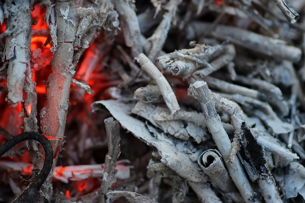 Kolen en as in het vuur