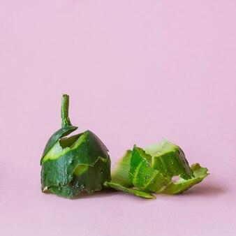 Komkommerschil op roze achtergrond als symbool van recycling circuleren economie