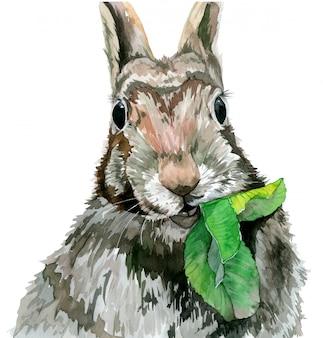 Konijn eet een blad en staart recht. aquarel illustratie.
