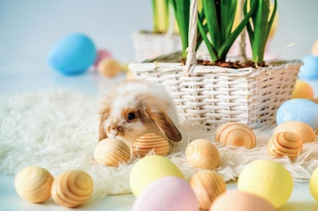 Konijn in pasen ingerichte kamer met beschilderde eieren
