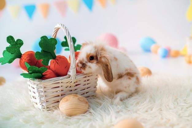 Konijn in pasen ingerichte kamer met wortelen en beschilderde eieren