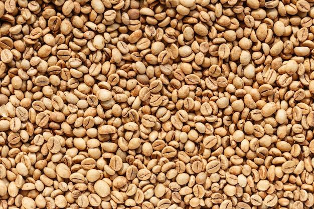 Kopi luwak of civet coffee