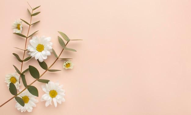 Kopieer ruimte bloeiende bloemen