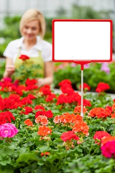 Kopieer ruimte voor uw advertentie. close-up van kopieerruimte op het commerciële bord met vrouw die met bloemen op de achtergrond werkt
