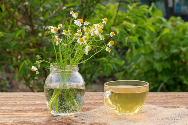 Kopje groene thee en glazen pot met witte kamille bloemen op houten planken met groene natuurlijke achtergrond.