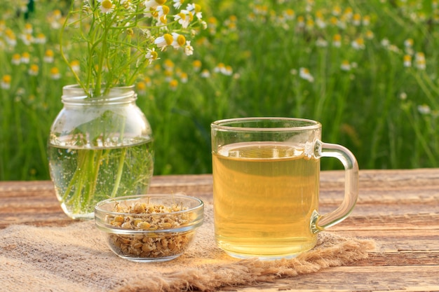 Kopje groene thee, pot met witte kamille bloemen en kleine glazen kom met droge bloemen van matricaria chamomilla op houten planken met groene natuurlijke achtergrond.