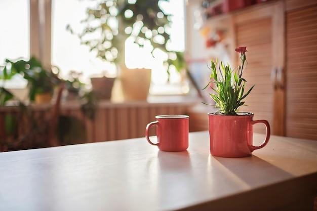 Kopje koffie en mok met groene bloeiende bloem op de vensterbank in de ochtend bloemendecor