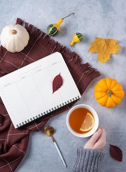Kopje thee in de hand, dagelijkse planner, plaid en enkele decoratieve pompoenen en bladeren op blauw